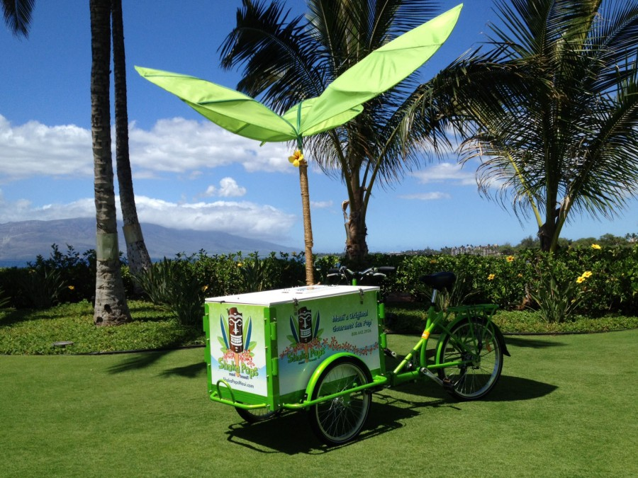 Shaka Pops gives you one more reason to drive to Hana!