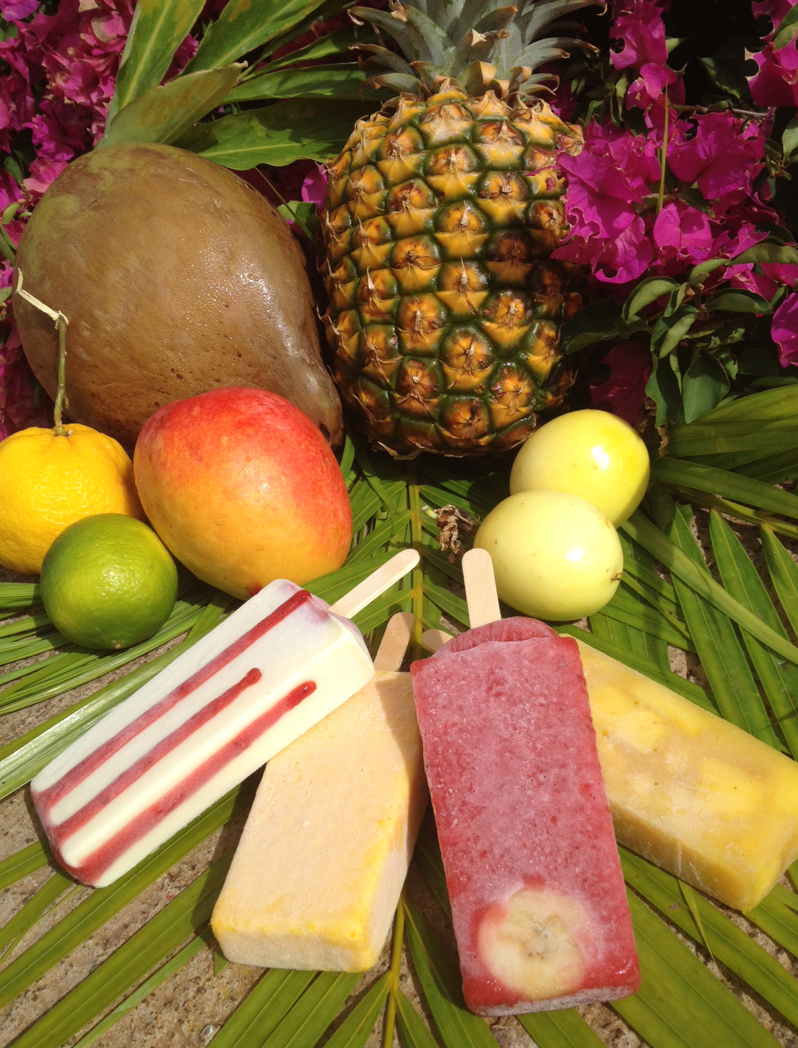 Shaka Pops wins Best New Food Product at 2012 Maui Agricultural Festival